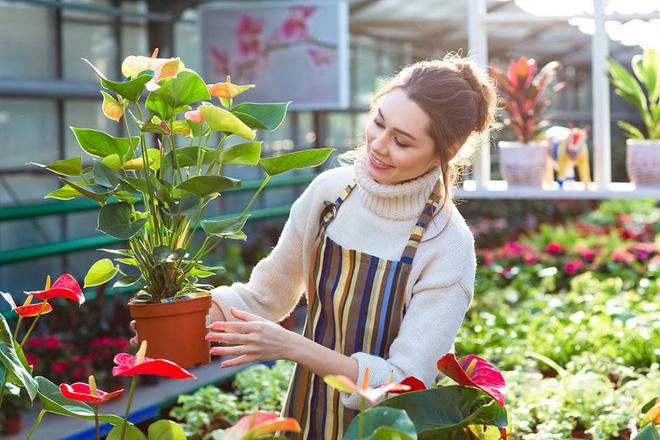 5 lợi ích sức khỏe vô giá khi trồng cây trong nhà: Muốn khỏe mạnh hãy sớm dựa vào cây! - Ảnh 7.