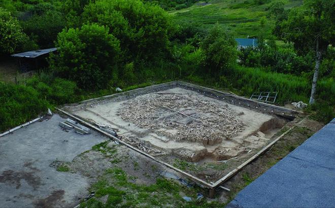 Đẹp độc lạ: Người tiền sử xây nhà sống qua Kỷ băng hà từ xương quái thú nặng 9 tấn?