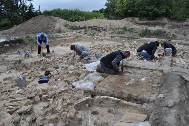Đẹp độc lạ: Người tiền sử xây nhà sống qua Kỷ băng hà từ xương quái thú nặng 9 tấn? - Ảnh 1.