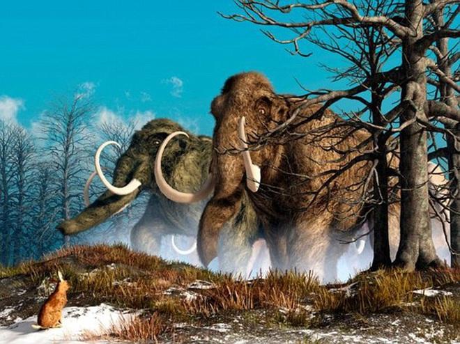 Đẹp độc lạ: Người tiền sử xây nhà sống qua Kỷ băng hà từ xương quái thú nặng 9 tấn? - Ảnh 5.