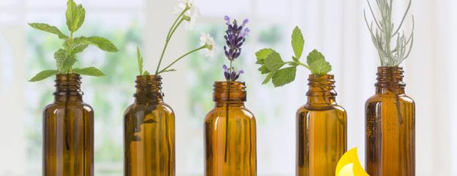 Cách sử dụng mùi hương tự nhiên vừa hạn chế virus vừa làm sạch nhà, chị em ở nhà dài ngày nên học ngay - Ảnh 5.