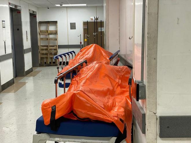 Hình ảnh đau thương tại tâm dịch New York: Thi thể nạn nhân COVID-19 xếp hàng chật hành lang bệnh viện - Ảnh 2.