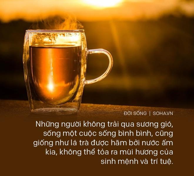 Cố tình pha trà bằng nước ấm, hòa thượng già chỉ cho chàng trai 1 đạo lý, giúp rũ bỏ hết muộn phiền, bất mãn với cuộc sống - Ảnh 5.
