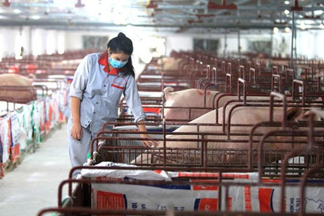 Sản xuất, tiêu thụ nông sản thời Covid-19: Cơ hội đẩy mạnh mối liên kết - Ảnh 1.