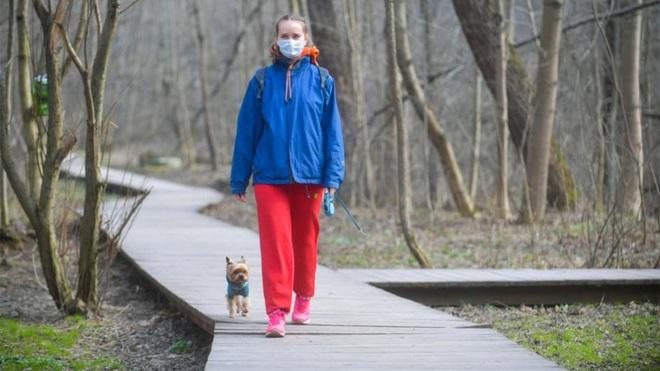 Trốn cách ly ở Nga, Ukraine: Dắt chó đi dạo, dắt gà đến tiệm tạp hóa - Ảnh 1.