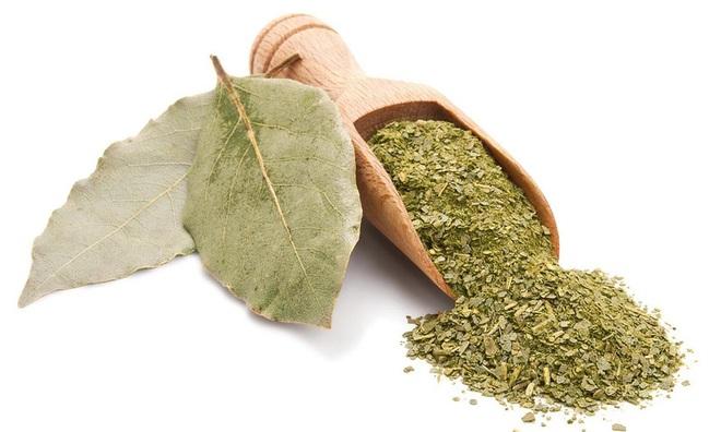 Trồng một cây nguyệt quế bên hiên nhà: Riêng lá cây đã có 8 lợi ích đáng nể cho sức khỏe - Ảnh 4.