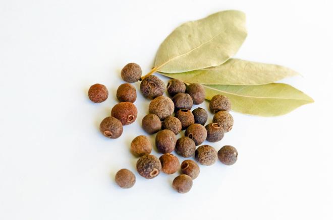 Trồng một cây nguyệt quế bên hiên nhà: Riêng lá cây đã có 8 lợi ích đáng nể cho sức khỏe - Ảnh 2.