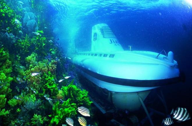 Mua tàu ngầm thám hiểm - Lá bài mới của ông Phạm Nhật Vượng để Vinpearl Nha Trang vượt qua Maldives, Hawaii, Jeju? - Ảnh 2.