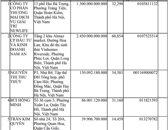 Lộ diện đối thủ của Vingroup tại dự án tỉ USD ở Hà Tĩnh - Ảnh 2.