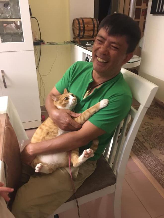 Biểu cảm đầy cảnh giác của boss khi lần đầu tiên được bố sen cưng nựng gây sốt MXH, thì ra lũ mèo có rất nhiều chiêu để lấy lòng phụ huynh! - Ảnh 2.