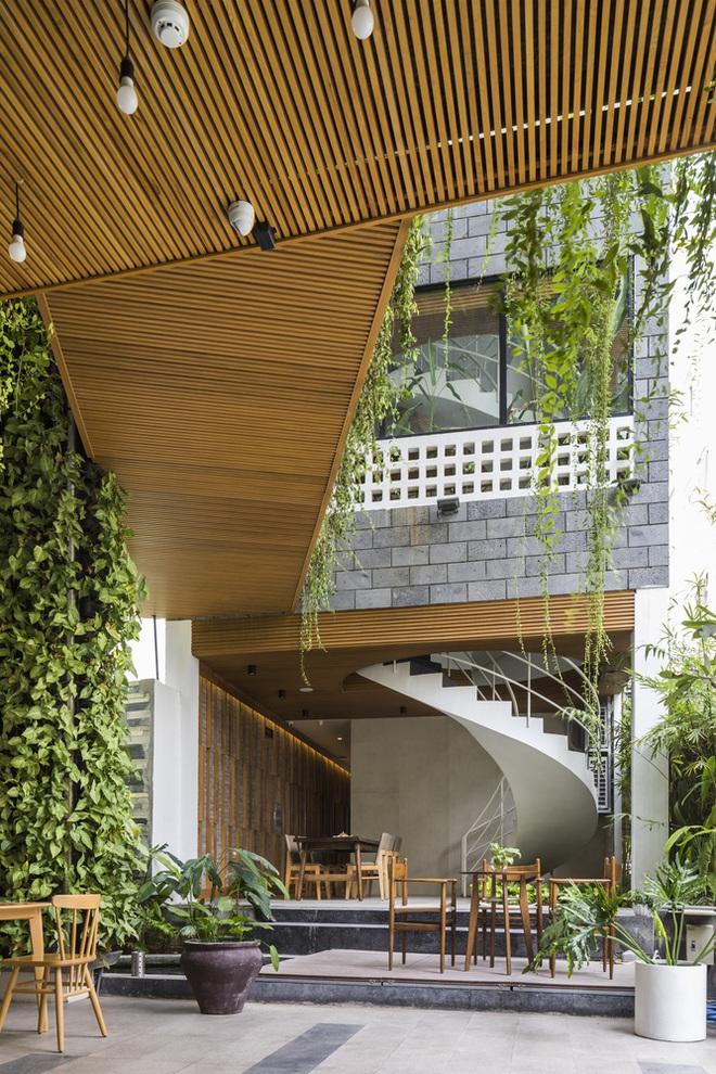 Vườn treo tại Đà Nẵng được cải tạo từ căn nhà xây dang dở xuất hiện long lanh trên báo Mỹ - Ảnh 6.