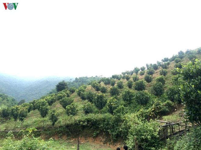 Gần 27.000 lao động ở Sơn La ra tỉnh ngoài làm thuê - Ảnh 1.