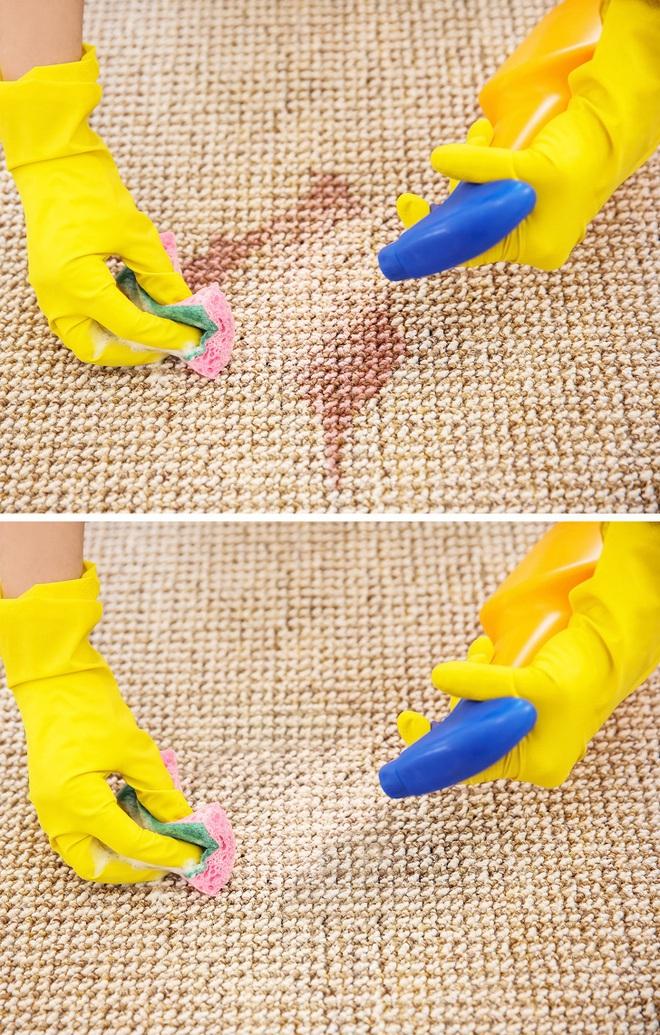 6 lý do khiến nhà bạn có mùi hôi khó chịu và cách khắc phục nhanh chóng, hiệu quả - Ảnh 5.