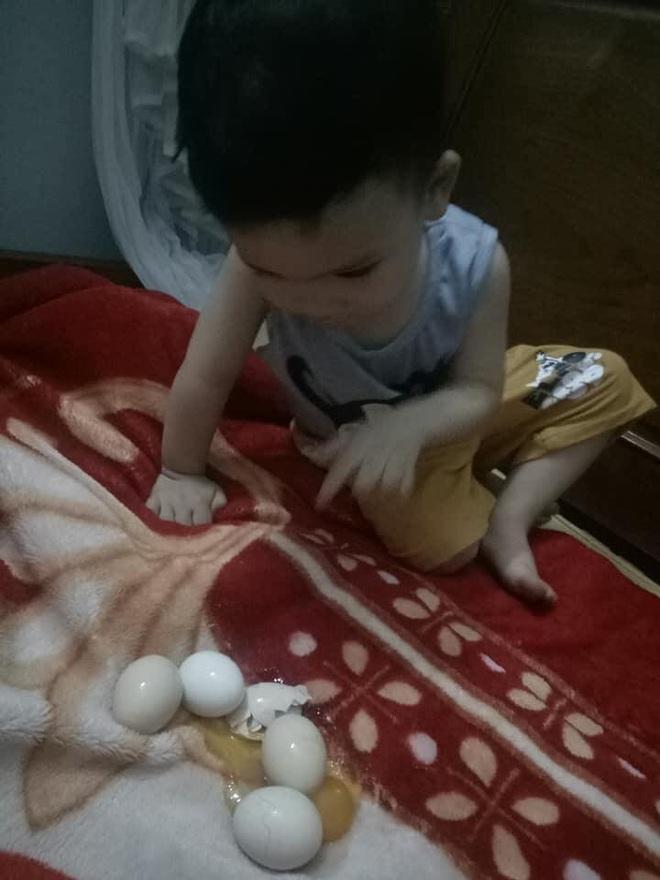 Con trai thắc mắc tự ấp trứng gà cả đêm nhưng sáng không nở, mẹ phát khóc vì cảnh tượng trên giường - Ảnh 3.