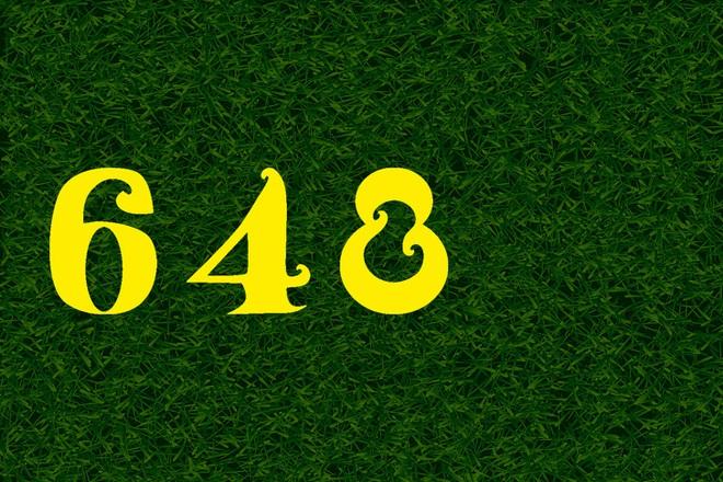 Test nhanh thị lực: Bạn có nhìn ra con số hay chữ trong bức hình này không? - Ảnh 12.