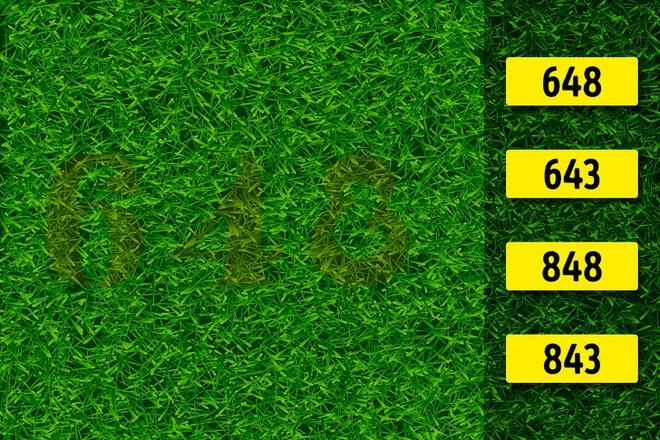 Test nhanh thị lực: Bạn có nhìn ra con số hay chữ trong bức hình này không? - Ảnh 2.