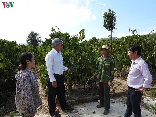 Vì lợi ích chung, người dân ở Kon Tum hiến hơn 20.000m2 đất làm cầu - Ảnh 1.