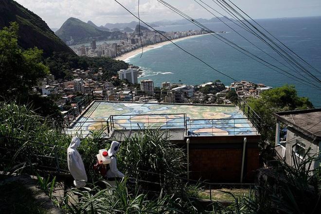 Brazil cực nhọc vật lộn với COVID-19 - Ảnh 9.