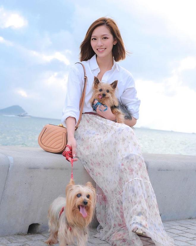 Hoa hậu Hong Kong hẹn hò thiếu gia sòng bạc Macau: Gia thế khủng và gợi cảm cỡ nào? - Ảnh 15.