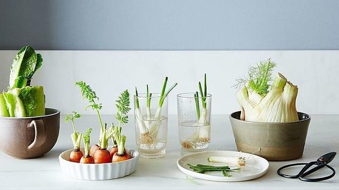 Sở hữu vườn rau gia vị xanh tốt từ phế liệu đơn giản và tiết kiệm cho góc bếp mùa hè luôn thơm - Ảnh 20.