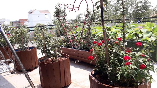 Doanh nhân Sài Gòn trồng cả vườn rau như trang trại và hồ sen trên sân thượng rộng 300m²  - Ảnh 11.