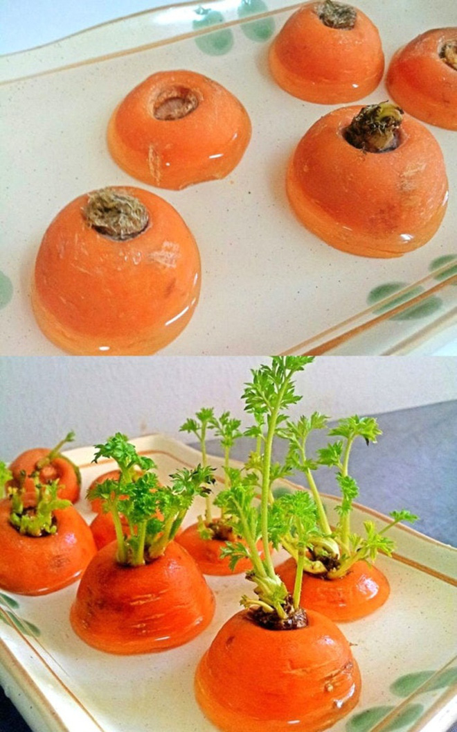 Sở hữu vườn rau gia vị xanh tốt từ phế liệu đơn giản và tiết kiệm cho góc bếp mùa hè luôn thơm - Ảnh 12.