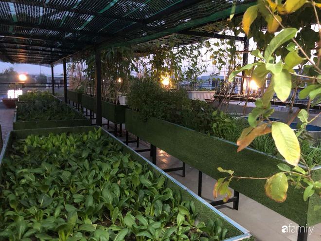 Doanh nhân Sài Gòn trồng cả vườn rau như trang trại và hồ sen trên sân thượng rộng 300m²  - Ảnh 14.