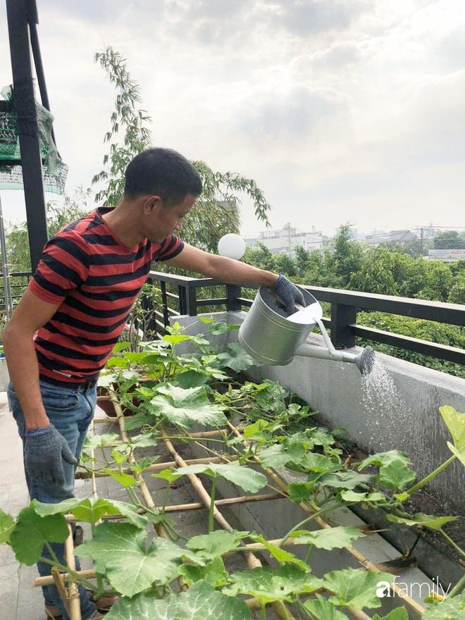 Doanh nhân Sài Gòn trồng cả vườn rau như trang trại và hồ sen trên sân thượng rộng 300m²  - Ảnh 15.