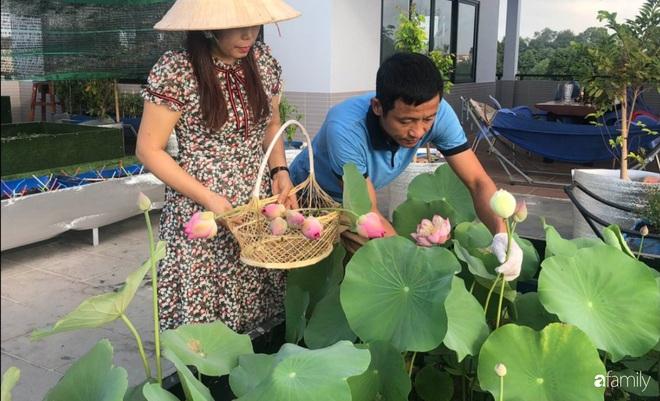 Doanh nhân Sài Gòn trồng cả vườn rau như trang trại và hồ sen trên sân thượng rộng 300m²  - Ảnh 24.
