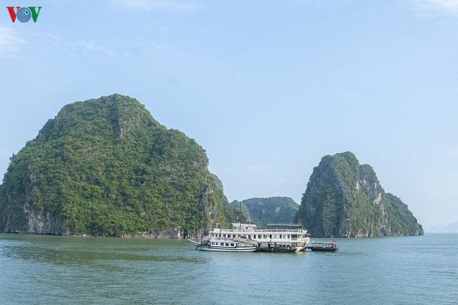 Kích cầu du lịch nội địa, hướng đi của các công ty lữ hành Việt - Ảnh 2.