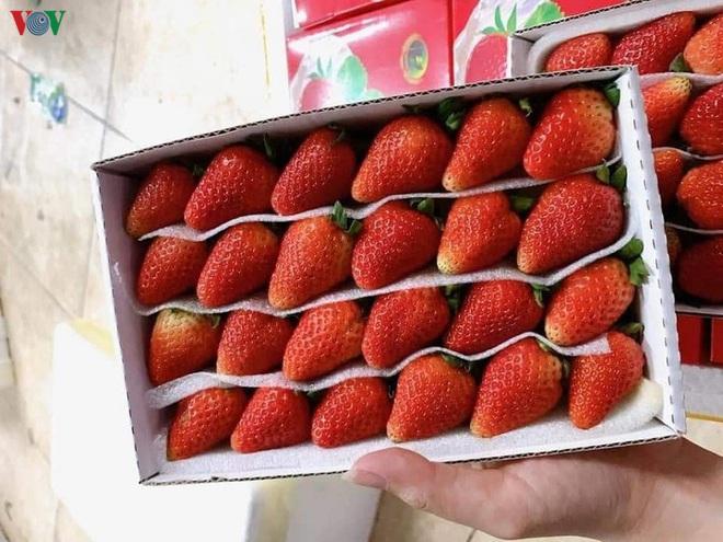 """Nhập nhèm xuất xứ hoa quả, người tiêu dùng nhận """"trái đắng"""" - Ảnh 2."""