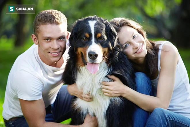 Giải pháp trị liệu và cải thiện sức khỏe toàn diện nhờ nuôi động vật: Có thể bạn chưa biết - Ảnh 1.