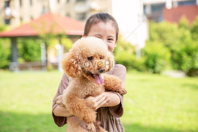 Giải pháp trị liệu và cải thiện sức khỏe toàn diện nhờ nuôi động vật: Có thể bạn chưa biết - Ảnh 2.