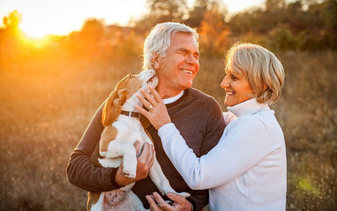 Giải pháp trị liệu và cải thiện sức khỏe toàn diện nhờ nuôi động vật: Có thể bạn chưa biết - Ảnh 6.