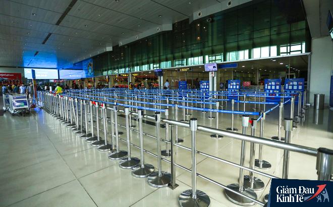 Hàng không tăng tần suất bay và bỏ giãn cách ghế ngồi, giá vé máy bay lập tức đảo chiều - Ảnh 3.