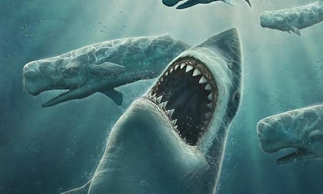 Giải mã quái vật biển sở hữu cặp hàm siêu mạnh: Cắn đôi cá mập khổng lồ chỉ trong 1/50 giây - Ảnh 6.