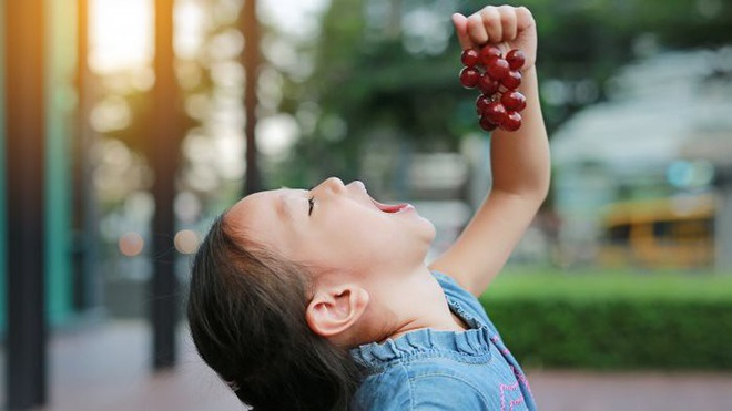 8 loại trái cây và rau củ màu tím mà bạn nên ăn hàng ngày - Ảnh 1.
