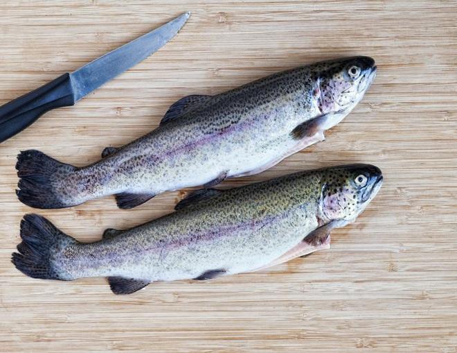 Những loại cá cực tốt cho sức khỏe - Ảnh 3.
