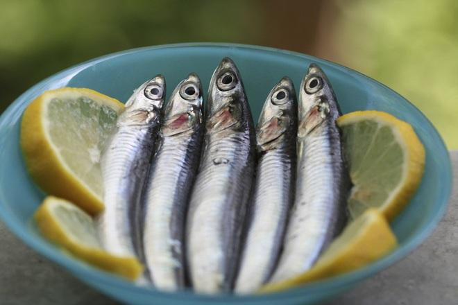 Những loại cá cực tốt cho sức khỏe - Ảnh 6.