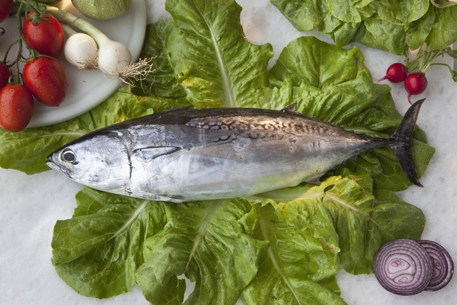 Những loại cá cực tốt cho sức khỏe - Ảnh 8.