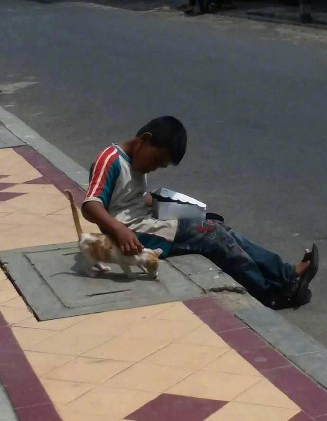Cậu bé nhem nhuốc bốc ăn trên hè phố, hành động với chú mèo lạ khiến bao người xúc động - Ảnh 2.