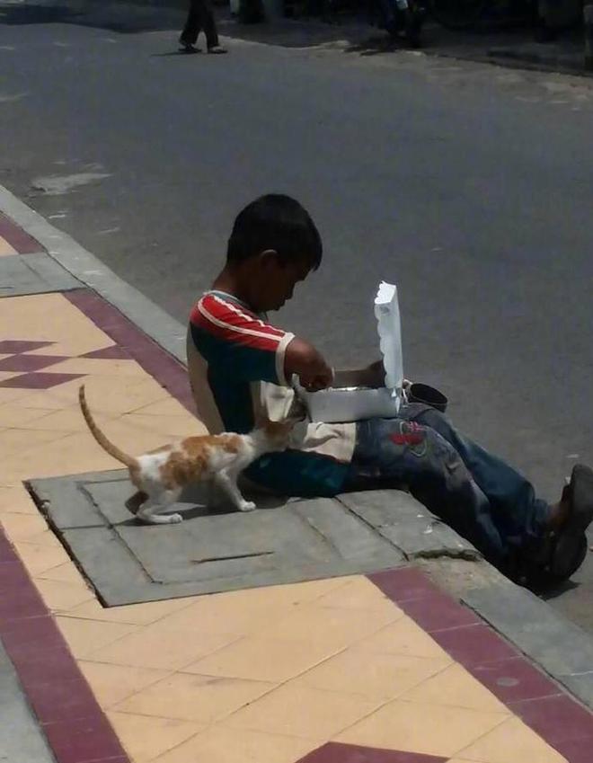 Cậu bé nhem nhuốc bốc ăn trên hè phố, hành động với chú mèo lạ khiến bao người xúc động - Ảnh 1.