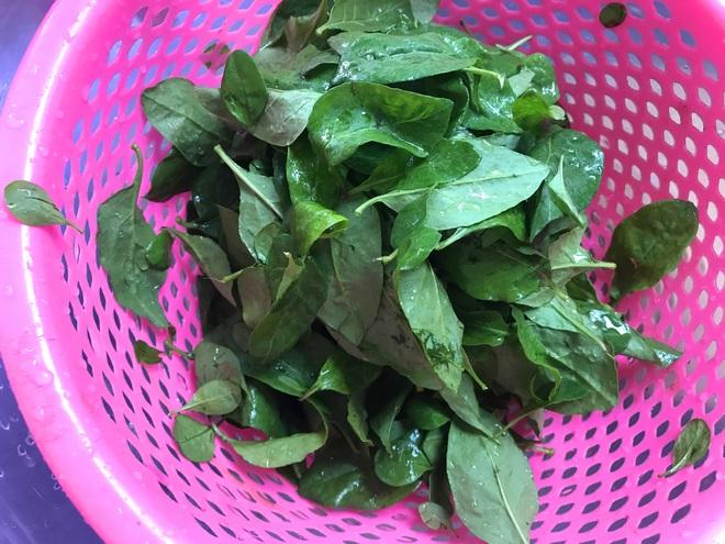 4 món ăn bổ thận cường dương nổi tiếng từ cổ chí kim: Nguyên liệu dễ kiếm, chữa nhiều bệnh - Ảnh 5.