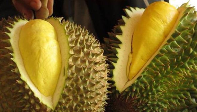 Chị bán sầu riêng 12 năm bật mí 6 bí quyết chọn sầu riêng nhanh - gọn - lẹ để mua trái nào chuẩn trái đó - Ảnh 5.