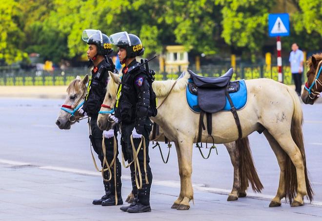 [Ảnh] Ấn tượng hình ảnh lực lượng Cảnh sát cơ động Kỵ binh trong lễ ra mắt - Ảnh 3.