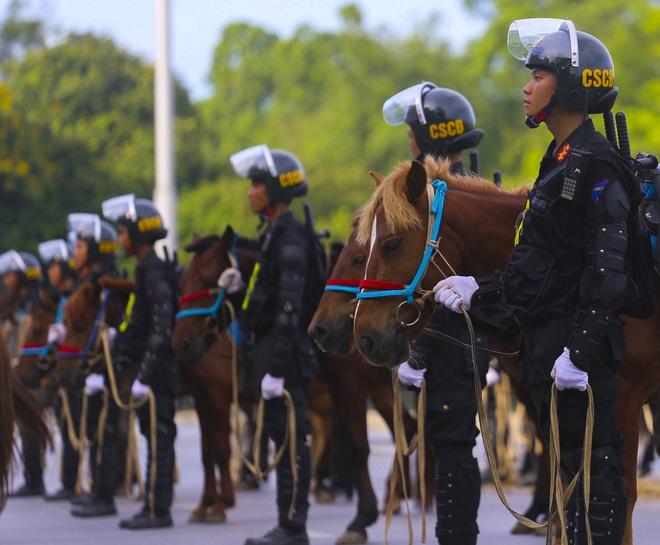 [Ảnh] Ấn tượng hình ảnh lực lượng Cảnh sát cơ động Kỵ binh trong lễ ra mắt - Ảnh 2.