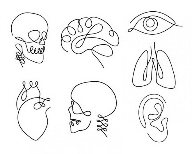 Người lãnh đạo điều hành được các quy trình phức tạp sẽ chọn hình bộ não, bạn thì sao? - Ảnh 1.