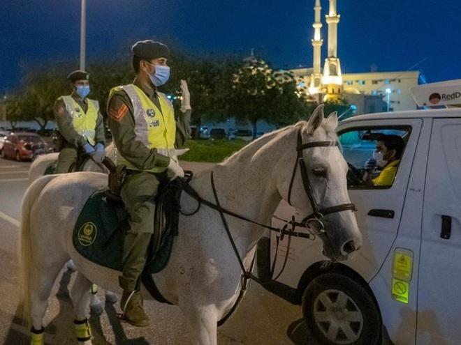 """Điều ít biết về khả năng """"độc nhất vô nhị"""" của cảnh sát kỵ binh - Ảnh 2."""