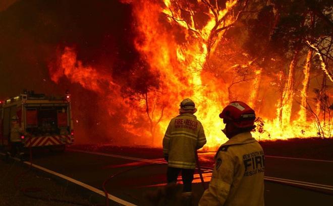 """Úc bắt 183 kẻ tình nghi liên quan đến thảm họa cháy rừng, trong đó có 69 trẻ vị thành niên, đáng phẫn nộ nhiều kẻ còn tỏ ra """"phấn khích tột cùng khi nhìn thấy lửa"""""""