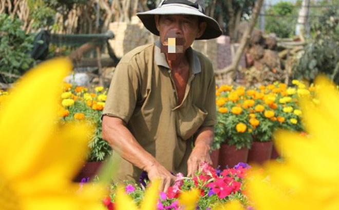 Nhiều chủng loại hoa mới, lạ ở Sa Đéc tấp nập lên phố